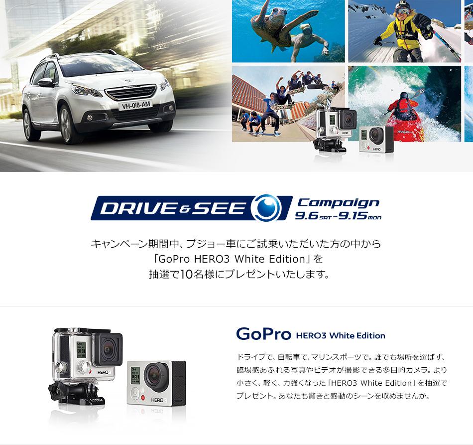 試乗でGoProが当たる!Drive & See Campaign_セクション1