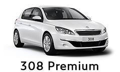 308 Premium.jpg