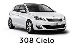 308 Cielo.jpg