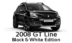 2008 GT Line Black & White Edition_top.jpg